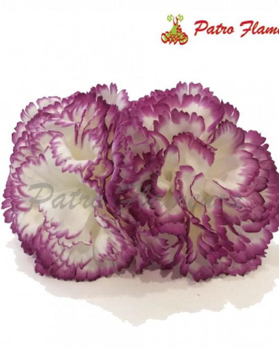 Flor Claveles del Señorito